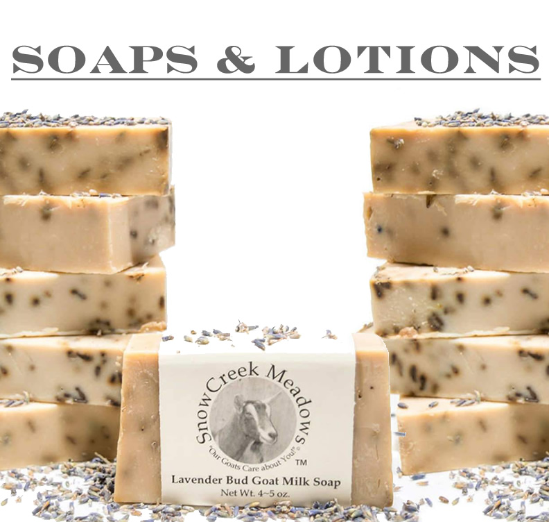 Goat Milk Soaps and Lotions